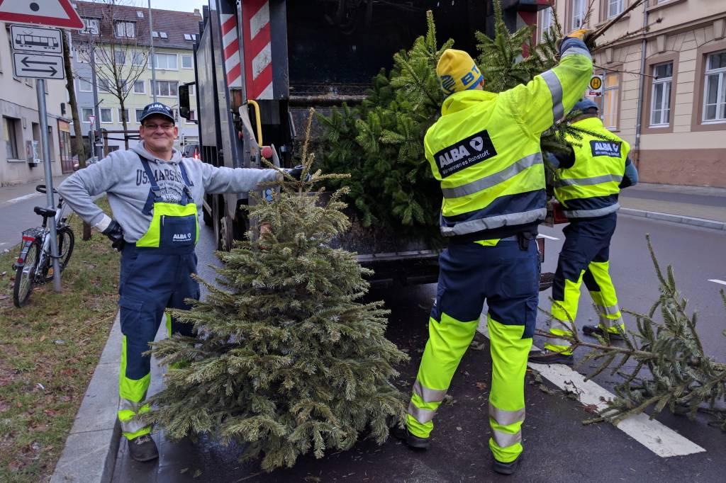 Braunschweig: Alba sammelt die Weihnachtsbäume ein - news38.de