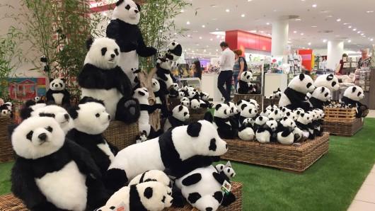 In Braunschweig wurden drei große Stoff-Pandabären geklaut (Symbolbild).