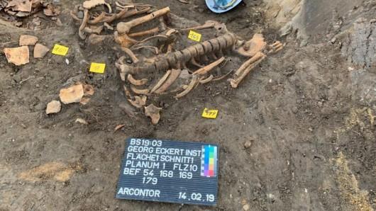 Diese menschlichen Knochen kamen bei Bauarbeiten auf dem Gelände des Georg-Eckert-Instituts ans Tageslicht.