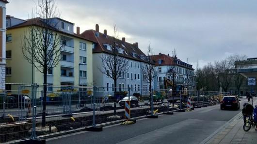 Die Bäume in der Jasperallee in Braunschweig sollen verschwinden.