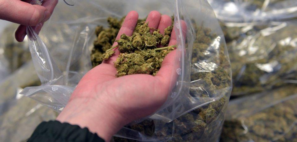 Der Polizei Niedersachsen ist ein Schlag gegen eine Drogenbande gelungen. Auch in Gifhorn gab es eine Razzia. (Symbolbild).