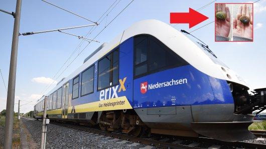 Eine Frau ist in der Regionalbahn unterwegs - und macht eine ungewöhnliche Entdeckung.