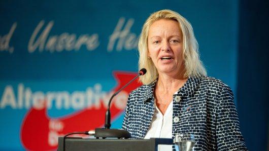Dana Guth, Landesvorsitzende der AfD Niedersachsen, spricht 2018 beim Landesparteitag der AfD Niedersachsen.