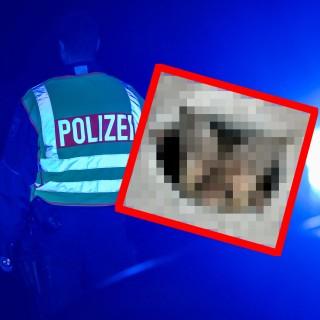 In Braunschweig hatte die Polizei nach einem panischen Anruf eine außergewöhnliche Begegnung.