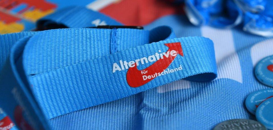 AfD-Parteitag in Braunschweig ruft Demos auf den Plan. (Symbolbild)