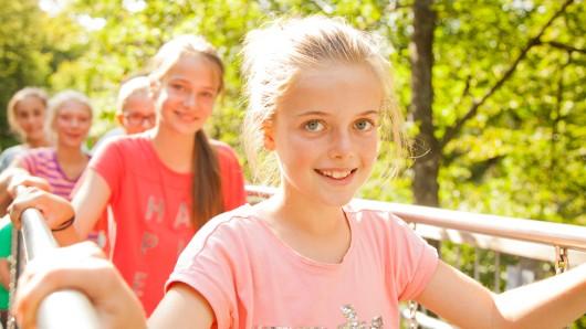 Auch bei Kindern beliebt: Der Baumwipfelpfad in Bad Harzburg.