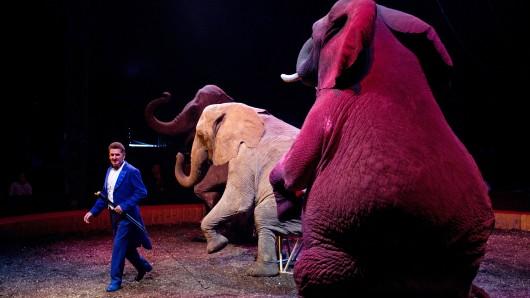 Tierschützer wollen Wildtiere in Zirkussen seit Jahren verbieten, da sie ihrer Meinung nach nicht artgerecht gehalten werden können. Die Grünen in Wolfsburg sehen das genauso (Archivbild).