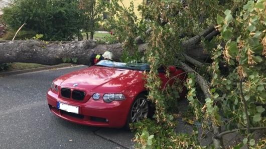 Dieser Baum krachte in Adenstedt auf den BMW eines 29-Jährigen.