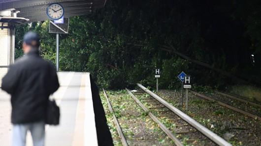 Ein Baum liegt am auf den Gleisen der Berliner S-Bahn nahe dem Mexikoplatz.