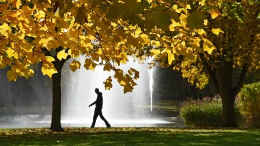 So schön bunt kann der Herbst sein. (Archivbild)