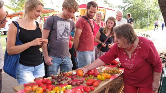 Tomaten, die es nicht im Supermarkt gibt, gibt es am Sonntag im Kennelbad.