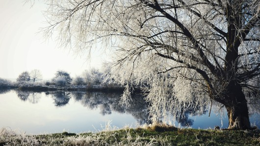 Winterlandscape on Havel River. Frost and Sunshine. Havelland (Germany)