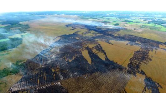 Qualm steigt beim Moorbrand auf dem Gelände der Wehrtechnischen Dienststelle 91 (WTD 91) in Meppen auf. (Archivfoto)