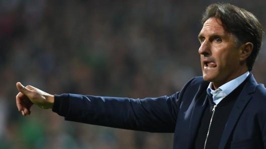 VfL-Coach Bruno Labbadia (Archivbild).