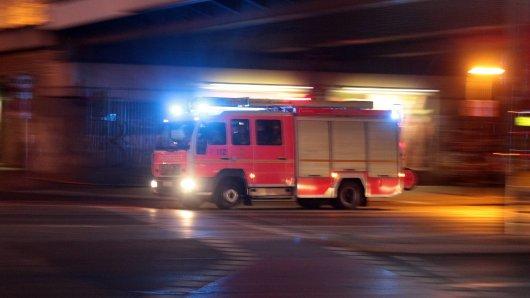 Bei einem Brand in Peine ist ein Hund ums Leben gekommen (Symbolfoto).