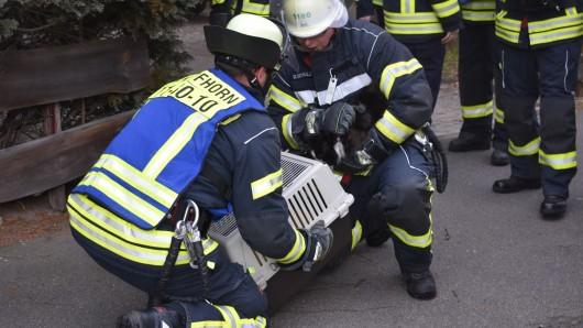 Die Feuerwehr Gifhorn hat auch ein Herz für Tiere. Beim Einsatz im Wittkopsweg retteten die Einsatzkräfte auch zwei Katzen.