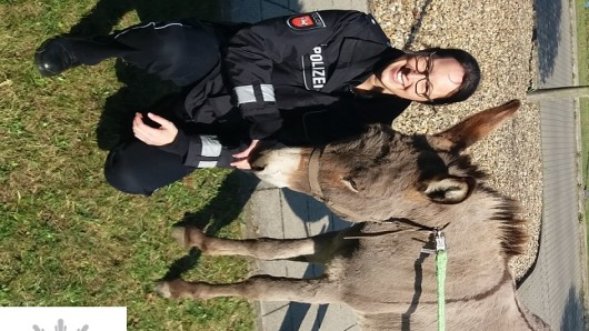Stephanie Schmidt von der Polizei Peine war in Braunschweig zu Besuch und hat dem Esel mal Guten Tag gesagt.