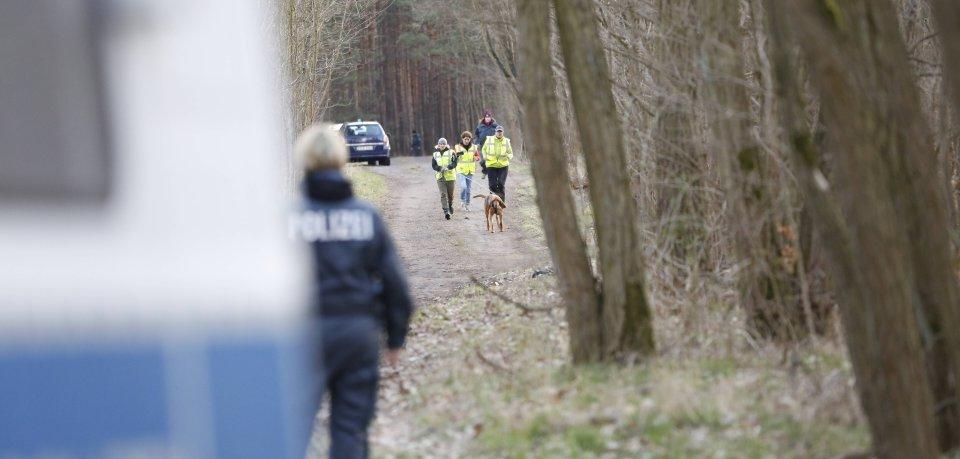 Im Harz wurde tagelang nach einem vermissten Wanderer gesucht. Jetzt wurde die Aktion abgebrochen (Symbolbild).