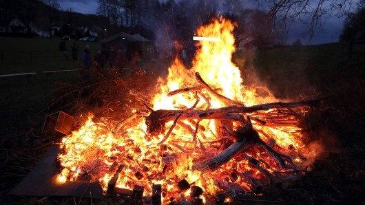 Die Tierärztin sieht die Gefahr, dass sich Mäuse und Igel, aber auch Kröten oder Eidechsen unter dem für die Feuer aufgeschichteten Holz verkriechen (Archivbild).