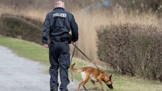 Polizeihunde haben in Niedersachsen eine folgenschwere Entdeckung gemacht. (Symbolfoto)