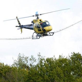 Ein Hubschrauber kreist über dem Landkreis Gifhorn, um einen Wirkstoff gegen die Raupen des Eichenprozessionsspinnern auszubringen. (Archivbild)