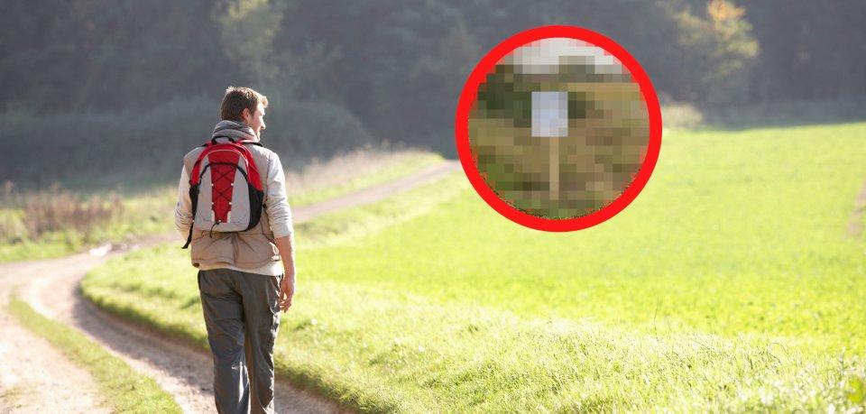 Ein Schild sorgte im Kreis Peine für Ratlosigkeit. (Symbolbild)