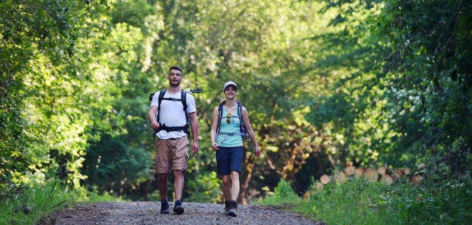 Zwei Wanderer gehen auf dem Hexenstieg im Harz. Der Wandertrend ist ungebrochen – das lässt sich auch an einem neuen Rkord ablesen. (Archivbild)