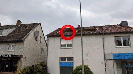Wie ist er wohl da rauf gekommen? Hund aus Helmstedt wird vom Dach geholt.