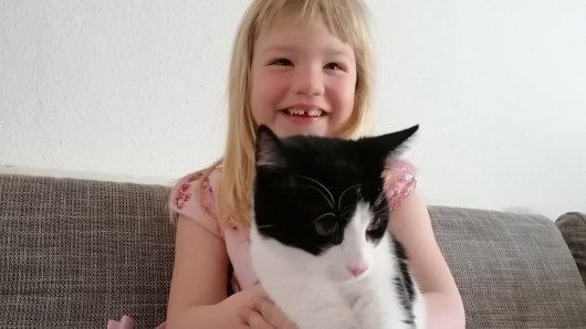 Katze Baghira aus Salzgitter ist wieder zu Hause – eine Woche voller Sorgen und Trauer ist vorbei!