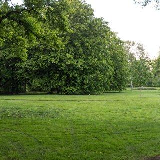 Mann wird im Stadtpark in Salzgitter schwer verletzt.