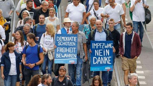 Mitglieder der AfD Gifhorn haben am Samsag an der Corona-Demo in Berlin teilgenommen. (Symbolbild)