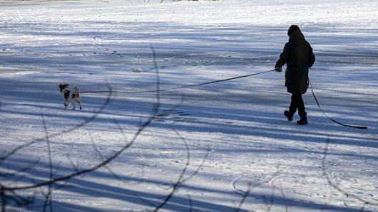 Hund in Gifhorn: Das Gassi gehen mit dem Vierbeiner an einem zugefrorenen See kann gefährlich werden. (Symbolfoto)