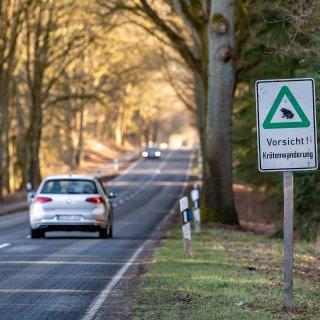 Auf einigen Straßen im Landkreis Gifhorn solltest du in den nächsten Wochen besonders vorsichtig unterwegs sein.