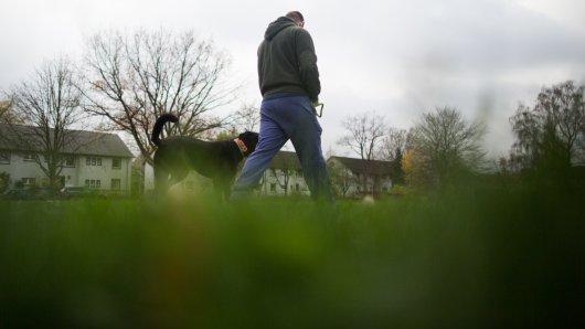 In Langelsheim im Harz ist ein Hundebesitzer mit einem Schlagstock angegriffen worden. Er reagierte aber ziemlich cool. (Symbolbild)