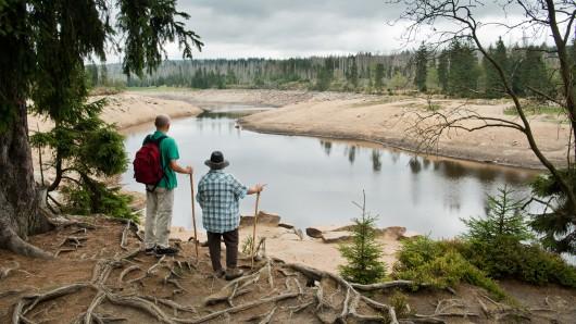 Wanderer stehen an der Talsperre Oderteich im Nationalpark Harz. In der Region wird es einer Studie zufolge immer trockener (Archivbild).