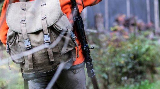 Der Rotwild-Bestand im Harz soll dieses Jahr beinahe halbiert werden. (Archivbild)