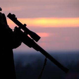 In der Wohnung des Mannes wurden mehrere Schusswaffen sichergestellt. (Symbolfoto)