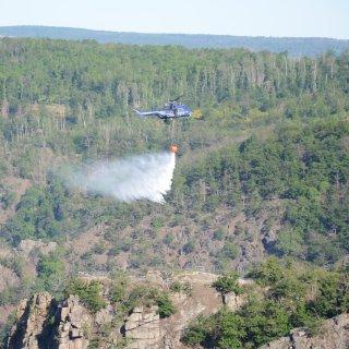 Großfeuer im Harz: Im Steilhang am Ausflugsziel Roßtrappe bei Thale wütet seit Montag ein Feuer.