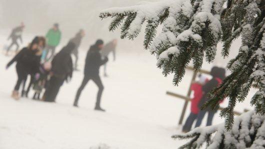 Im Harz tummeln sich die Touristen – eine gefährliche Situation für alle vor Ort. (Archivfoto)
