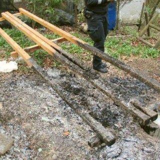 Ein Unbekannter hat im Harz mutwillig sechs Bienenvölker ausgelöscht. Anders gesagt: Bis zu 180.000 Bienen sind tot.