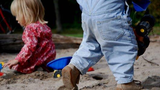 Kinder haben auf einem Spielplatz im Harz gemeinsam gespielt – und eine gefährliche Entdeckung gemacht! (Symbolbild)