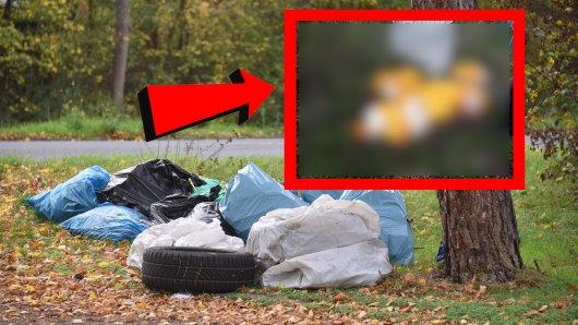 In Goslar schmissen Unbekannte mehrere Müllsäcke weg – mit außergewöhnlichem Inhalt. (Symbolbild)