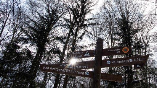 Wandern im Harz: Diese Wege sind wieder frei (Symbolbild).