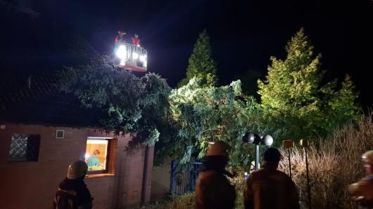 Dieser Baum ist am Montagabend auf ein Einfamilienhaus gestürzt. Verletzt wurde niemand.