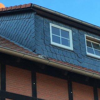 Katze Loki war in Helmstedt aus einem hoch gelegenen Dachfenster geklettert – und steckte nun in der Klemme