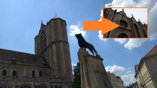 Über dem Tor des Braunschweiger Doms steht eine orangefarbene Rettungsweste. DAS ist der Grund. (Archivbild)
