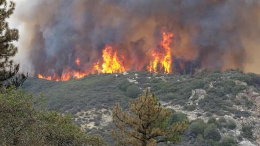 Waldbrand in Zentral Kalifornien im September 2015 (Archivbild).