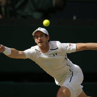 Andy Murray setzte sich im Wimbledon-Finale durch. Es ist sein zweiter Sieg beim bedeutendsten Tennisturnier der Welt.