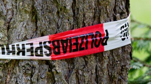 Ein vermisster Mann aus dem Harz konnte nur noch tot gefunden werden. (Symbolfoto)