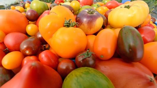 Tomaten in ihrer bunten Vielfalt